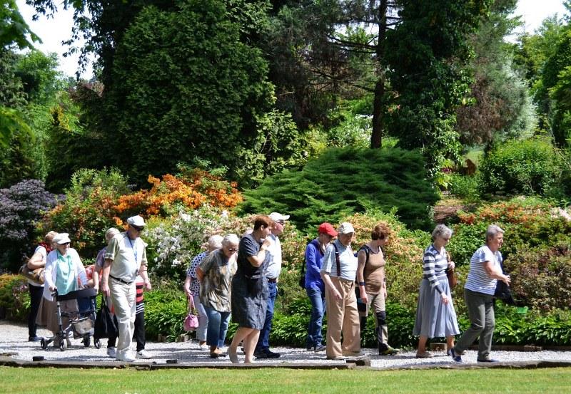 Arboretum Wojsławice 05 06 2017 Ogród Botaniczny 81