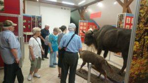 wycieczka jednodniowa Gołuchów - Kalisz